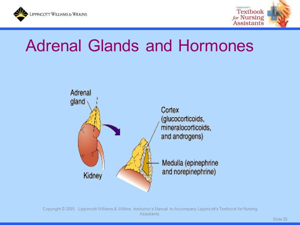 Adrenal Glands and Hormones