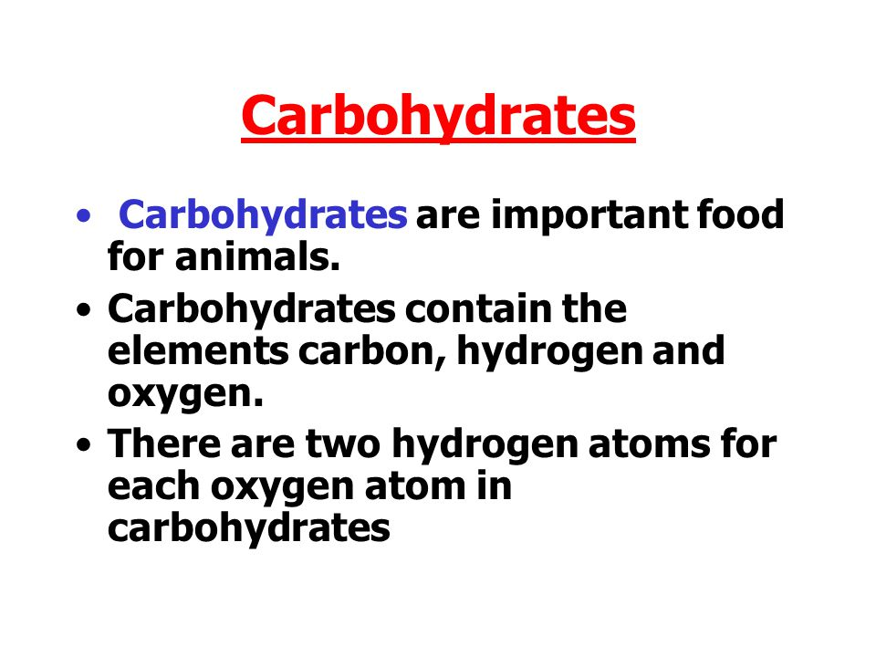 Carbohydrates Carbohydrates are important food for animals.