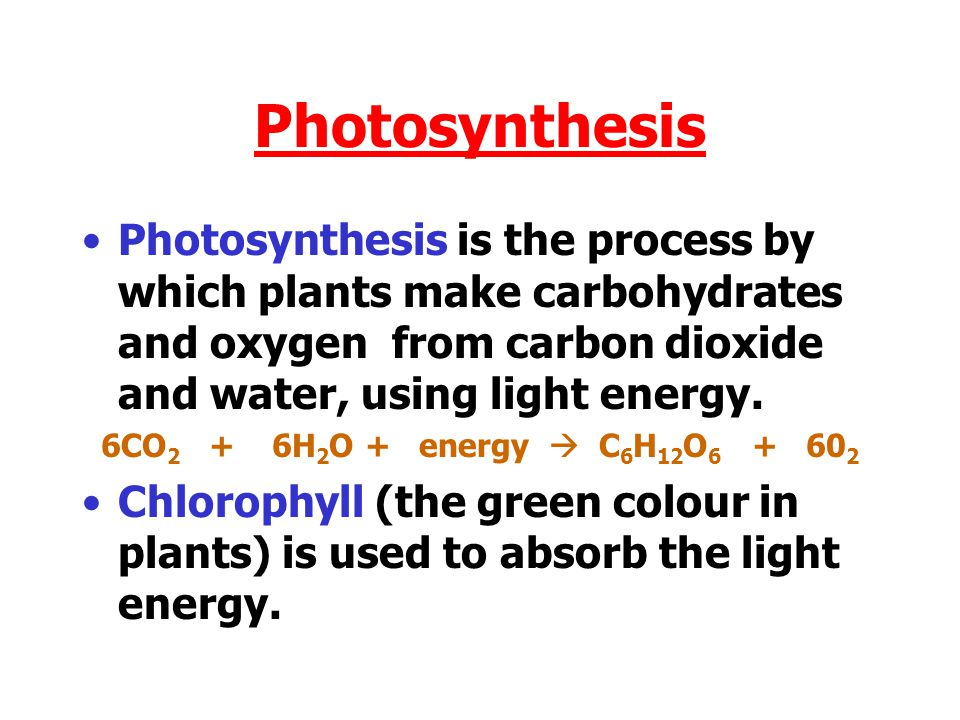 Photosynthesis Photosynthesis is the process by which plants make carbohydrates and oxygen from carbon dioxide and water, using light energy.