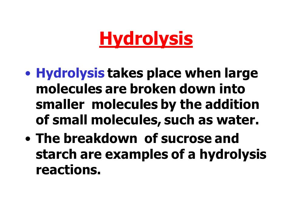Hydrolysis Hydrolysis takes place when large molecules are broken down into smaller molecules by the addition of small molecules, such as water.