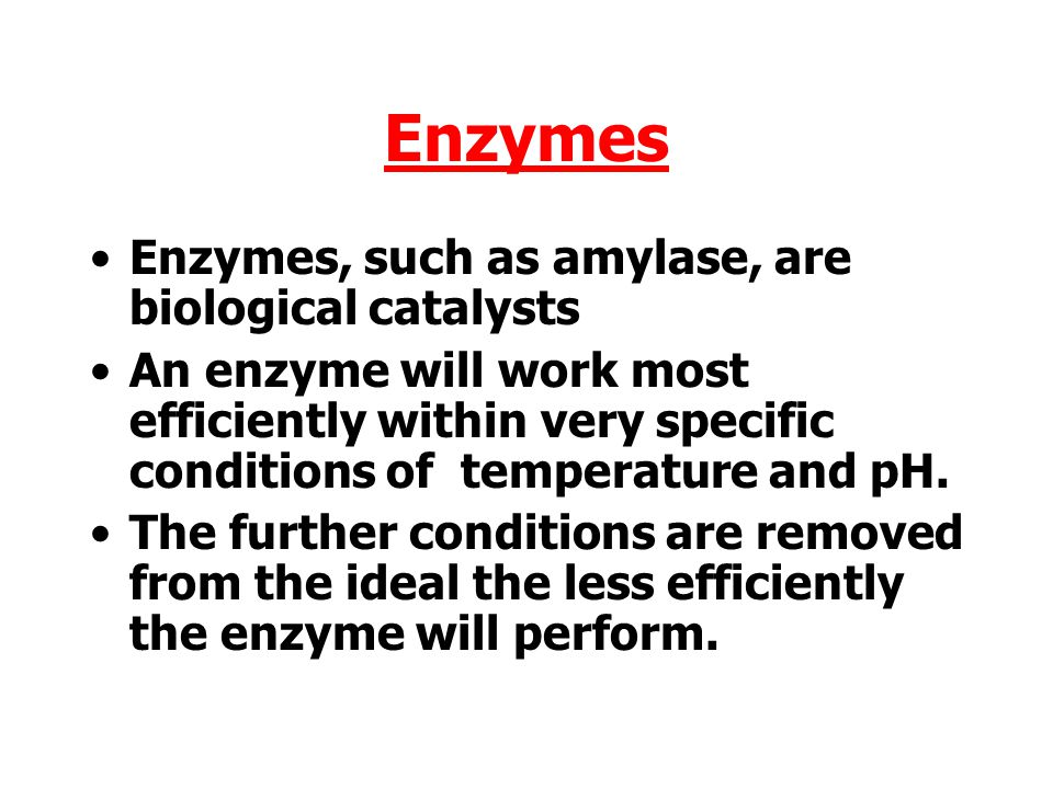 Enzymes Enzymes, such as amylase, are biological catalysts