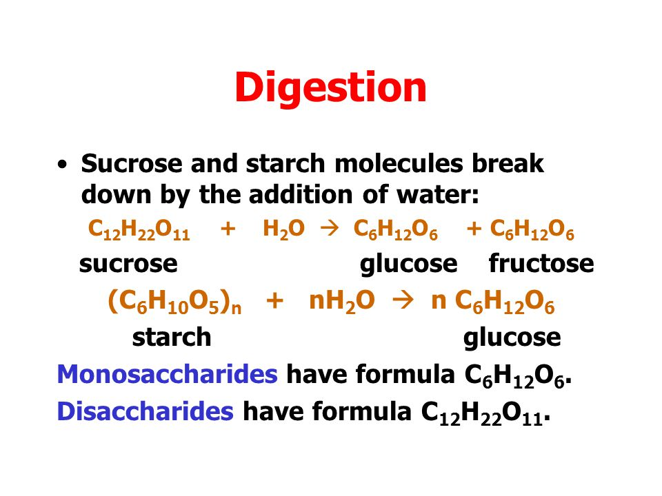 Digestion Sucrose and starch molecules break down by the addition of water: C12H22O11 + H2O  C6H12O6 + C6H12O6.
