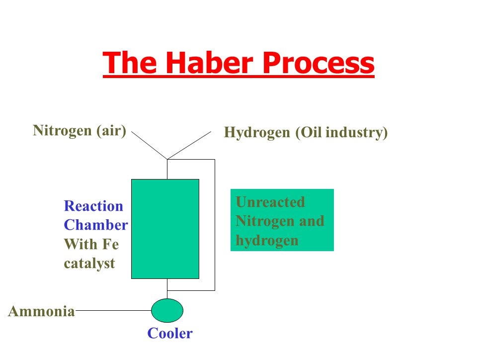 The Haber Process Nitrogen (air) Hydrogen (Oil industry) Unreacted