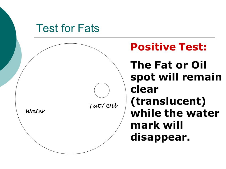Test for Fats Positive Test: