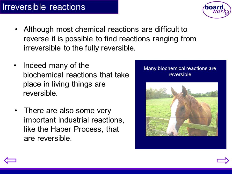 Many biochemical reactions are reversible