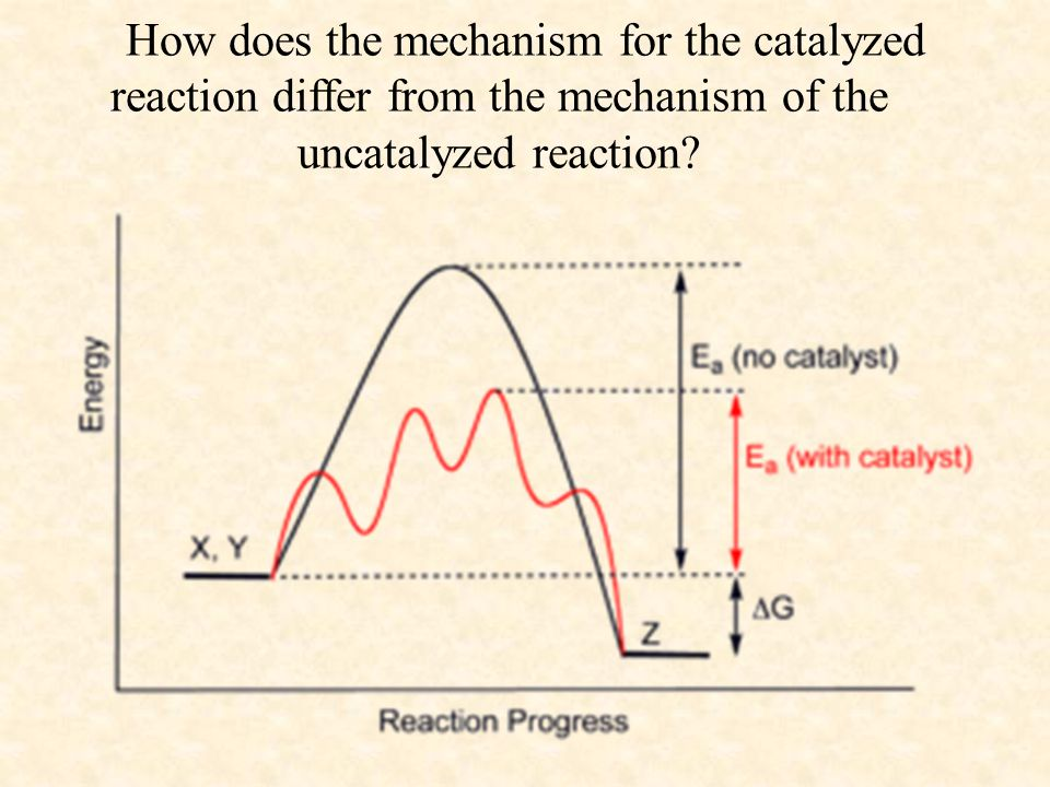 How does the mechanism for the catalyzed reaction differ from the mechanism of the uncatalyzed reaction