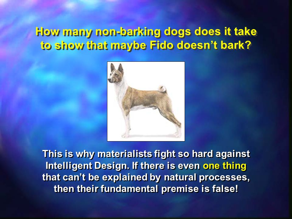 How many non-barking dogs does it take to show that maybe Fido doesn't bark