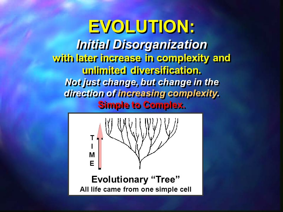 EVOLUTION: Initial Disorganization