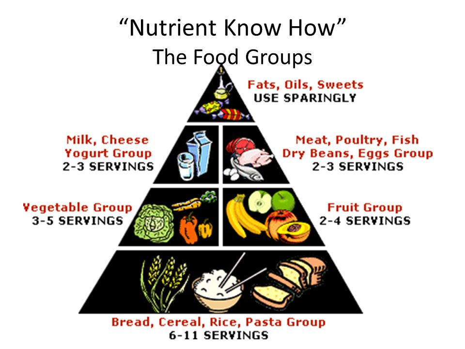 Nutrient Know How The Food Groups