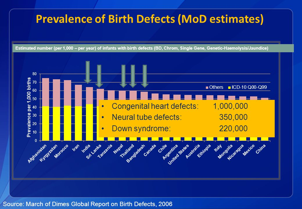 Health impact of birth defects WHO Report 2006