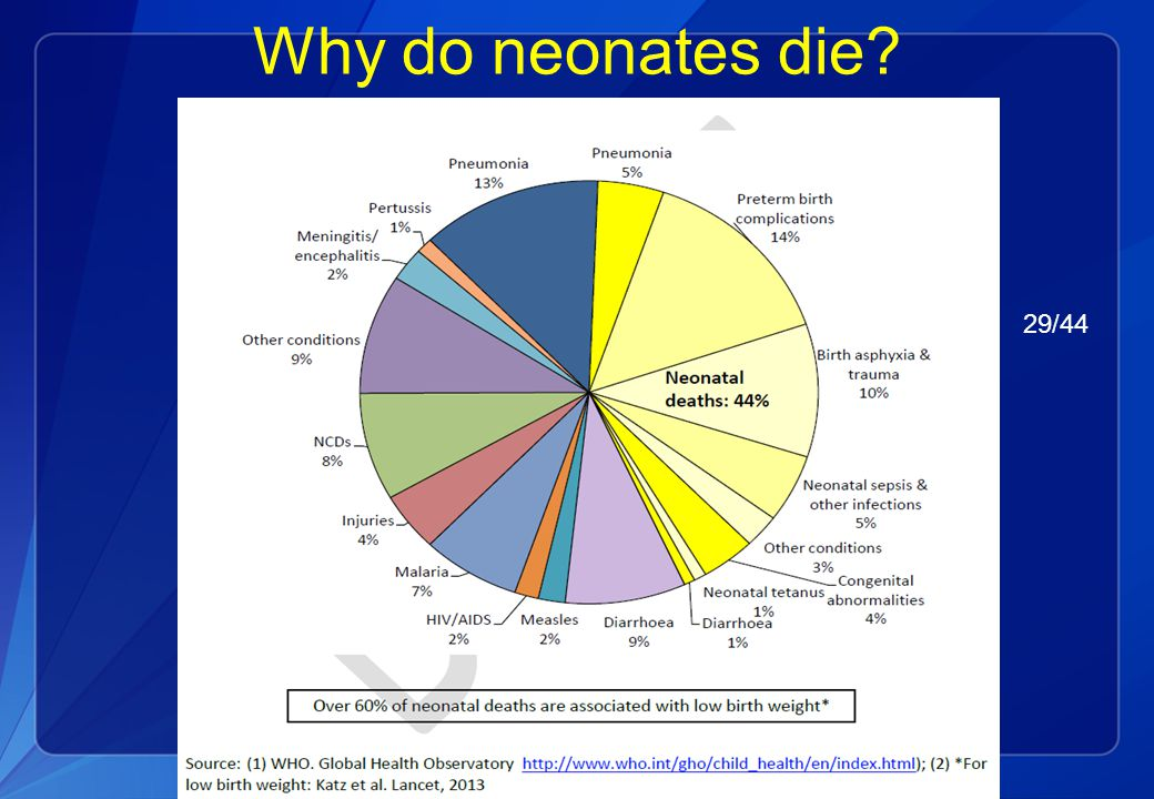 Causes of Neonatal Deaths Globally