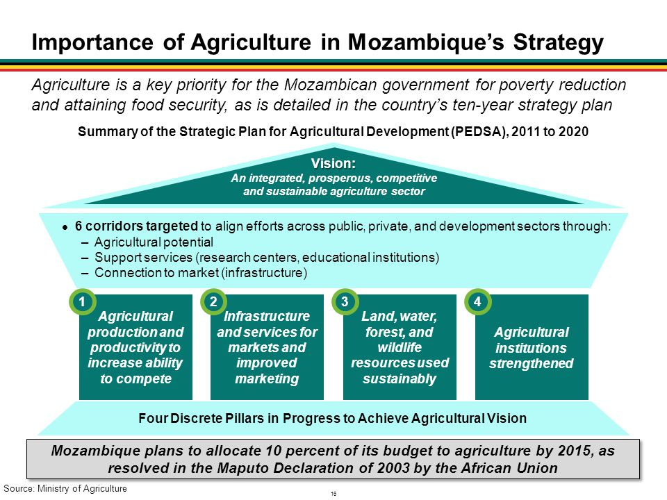 Importance of Agriculture in Mozambique's Strategy