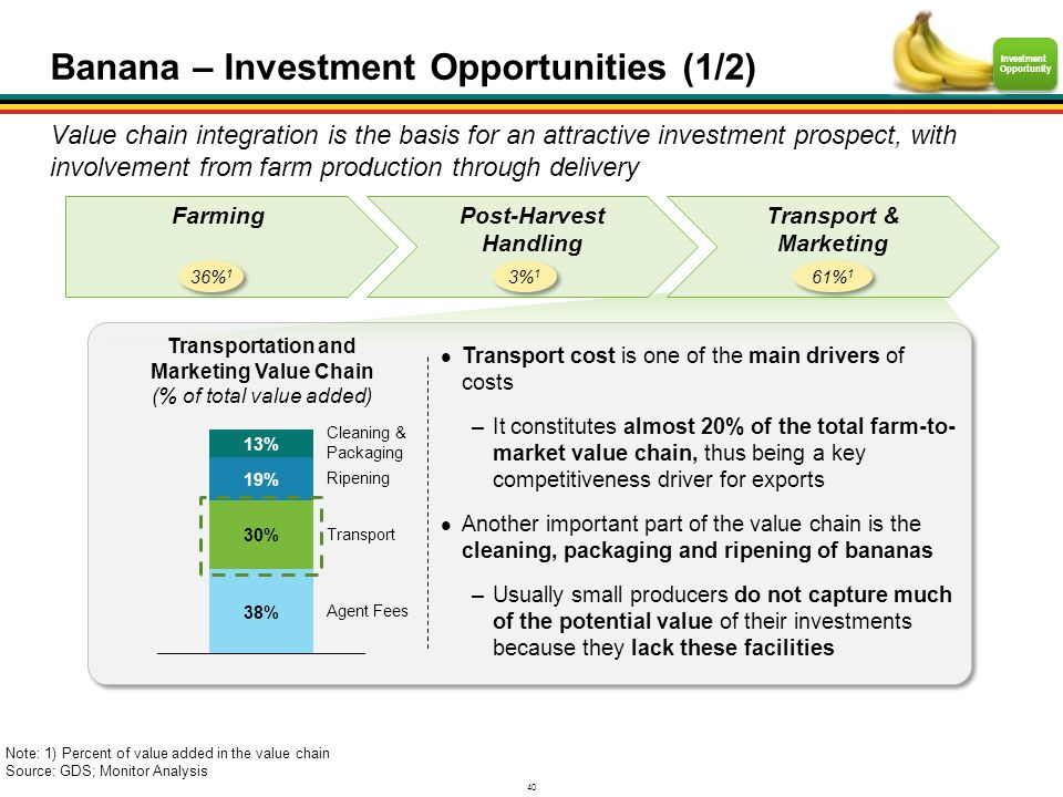 Banana – Investment Opportunities (1/2)