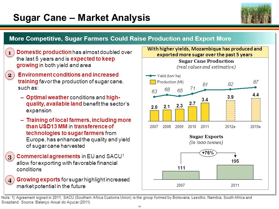 Sugar Cane – Market Analysis