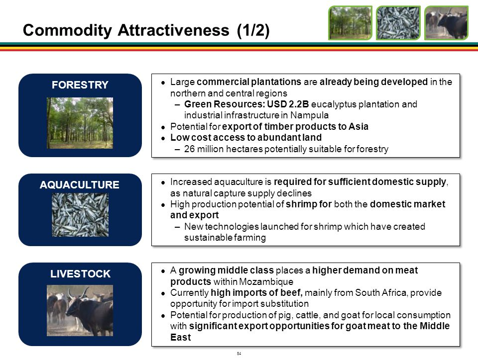 Commodity Attractiveness (1/2)