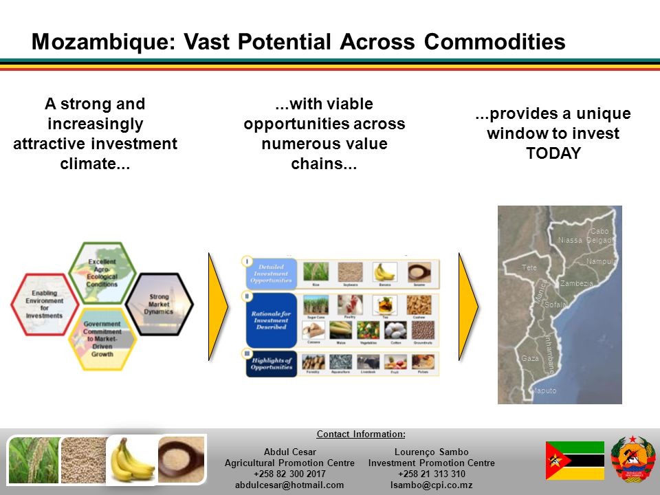 Mozambique: Vast Potential Across Commodities