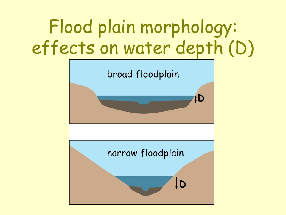 Flood plain morphology: effects on water depth (D)