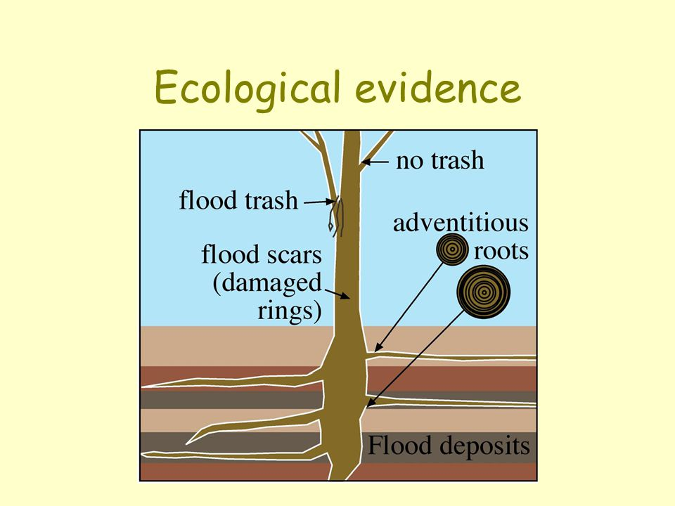 Ecological evidence