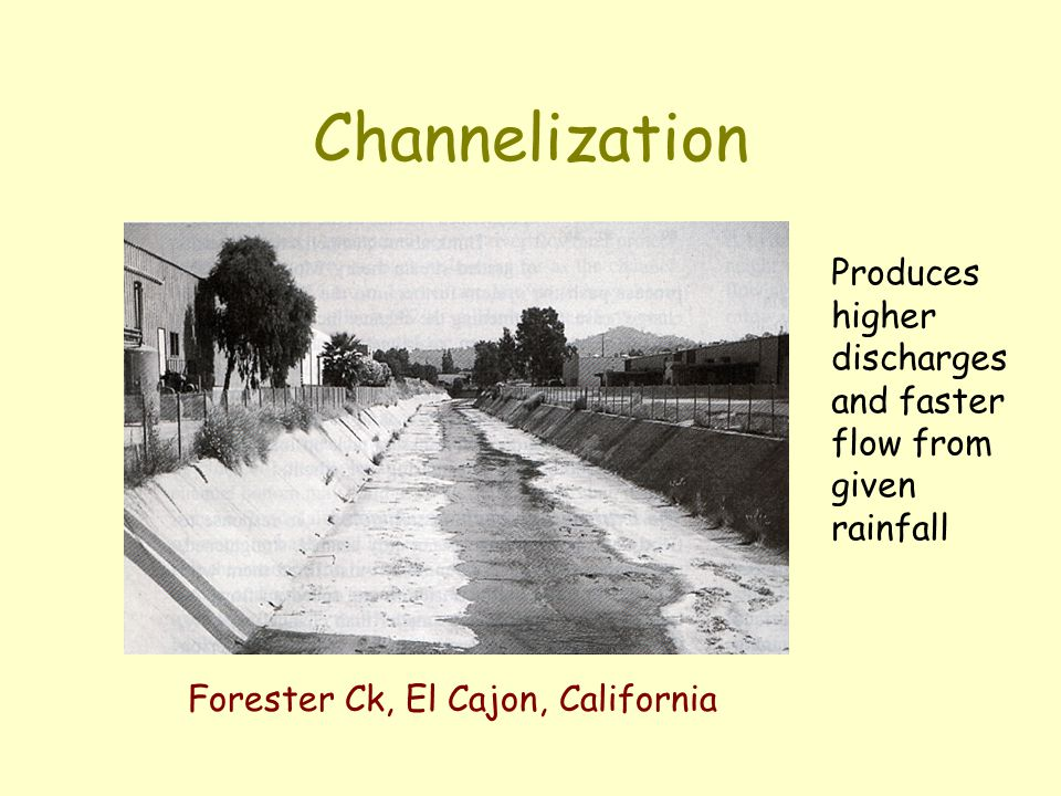 Channelization Produces higher discharges and faster flow from given rainfall.