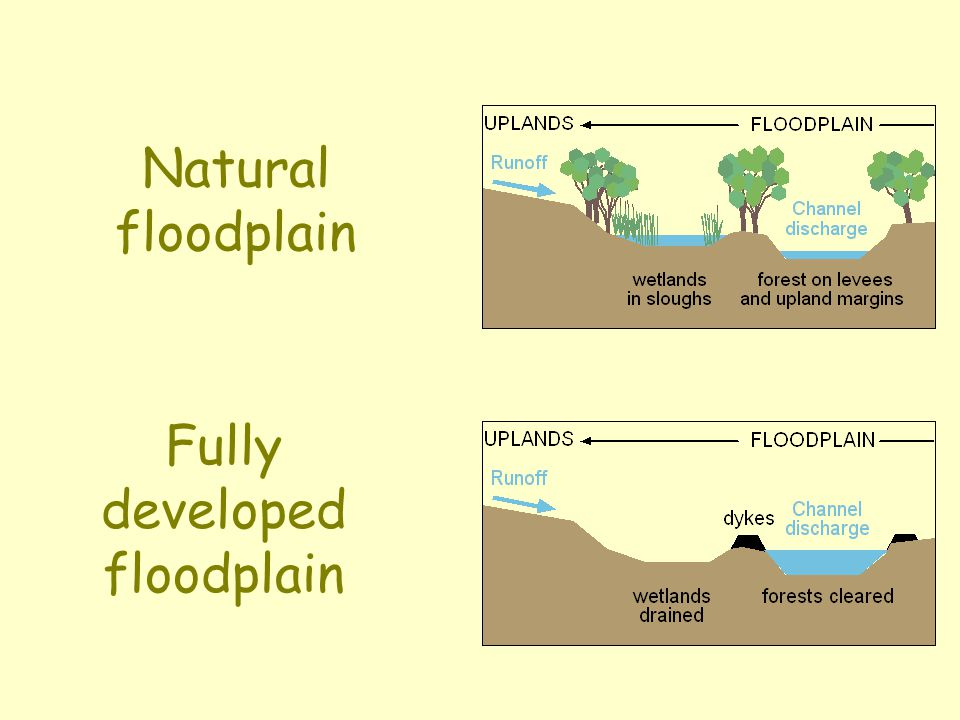 Fully developed floodplain