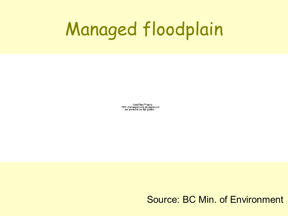 Managed floodplain Source: BC Min. of Environment