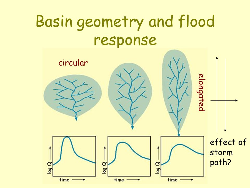 Basin geometry and flood response