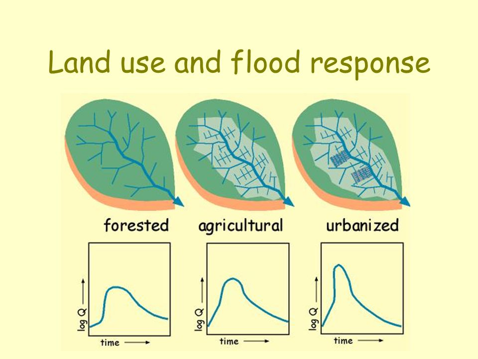 Land use and flood response