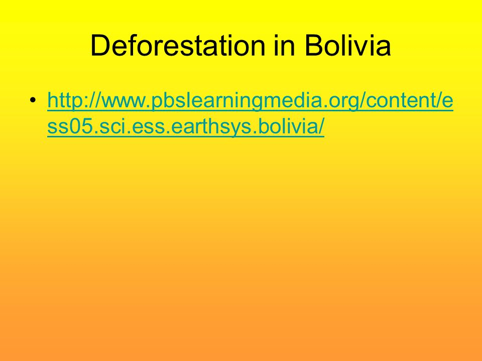 Deforestation in Bolivia