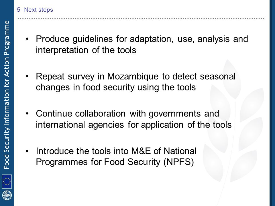 5- Next steps Produce guidelines for adaptation, use, analysis and interpretation of the tools.