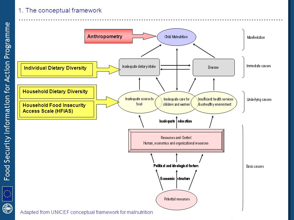 1. The conceptual framework