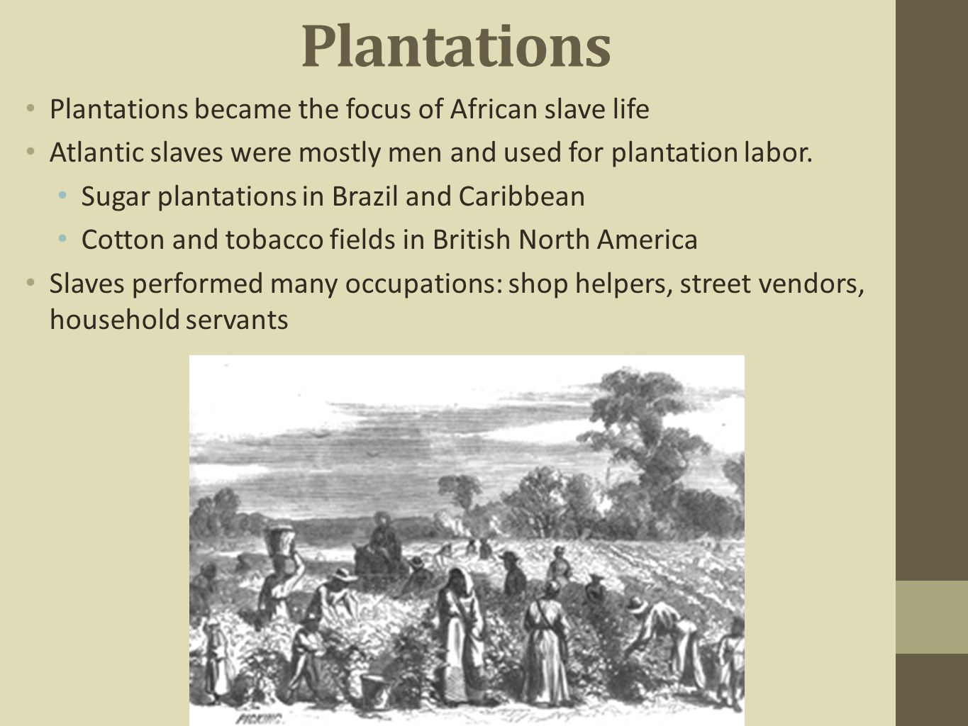 Plantations Plantations became the focus of African slave life