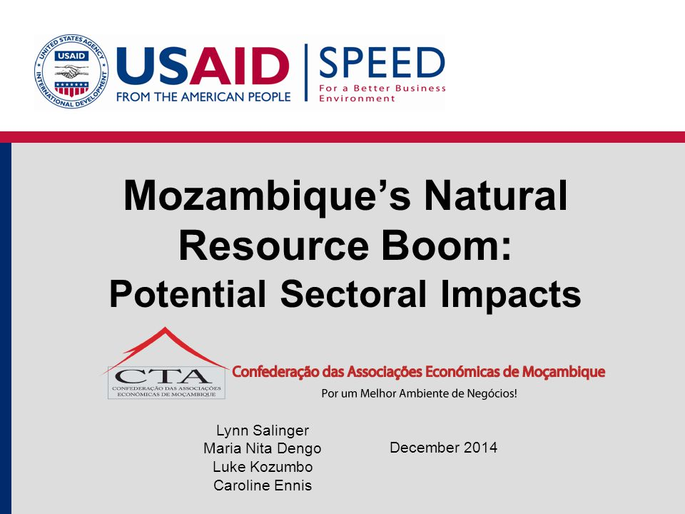 Mozambique's Natural Resource Boom: Potential Sectoral Impacts