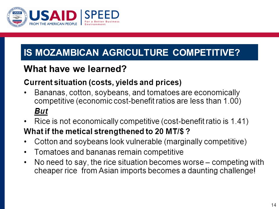 Is Mozambican Agriculture Competitive