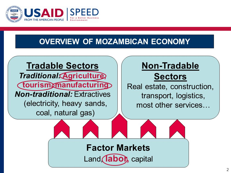 Overview of Mozambican Economy