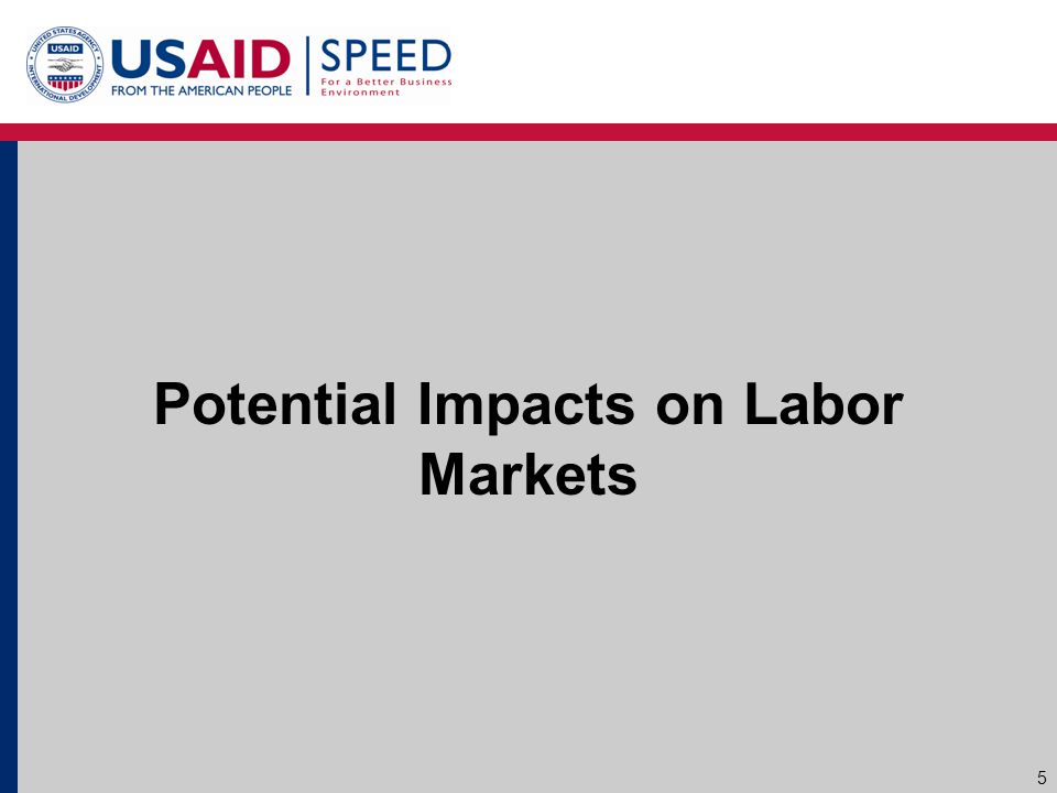 Potential Impacts on Labor Markets