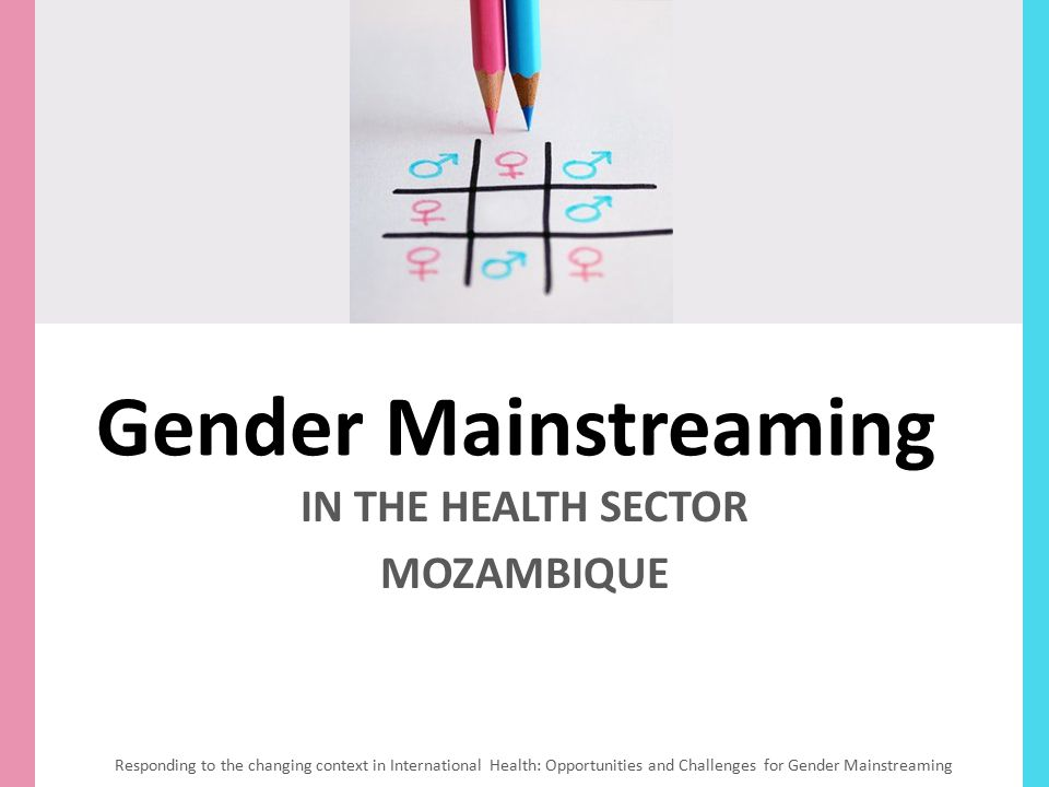 IN THE HEALTH SECTOR MOZAMBIQUE