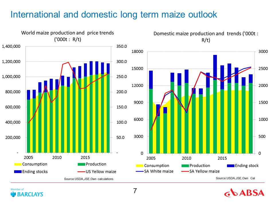 International and domestic long term maize outlook