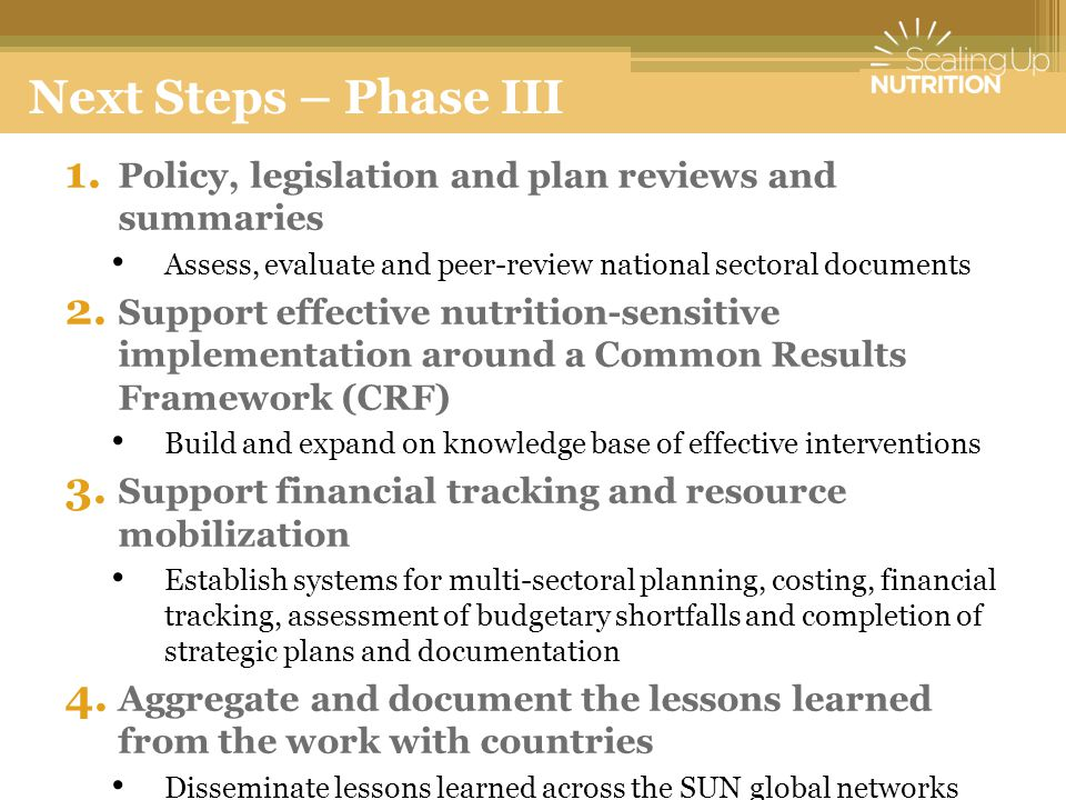 Next Steps – Phase III Policy, legislation and plan reviews and summaries. Assess, evaluate and peer-review national sectoral documents.