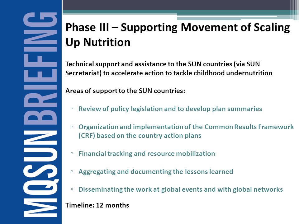Phase III – Supporting Movement of Scaling Up Nutrition
