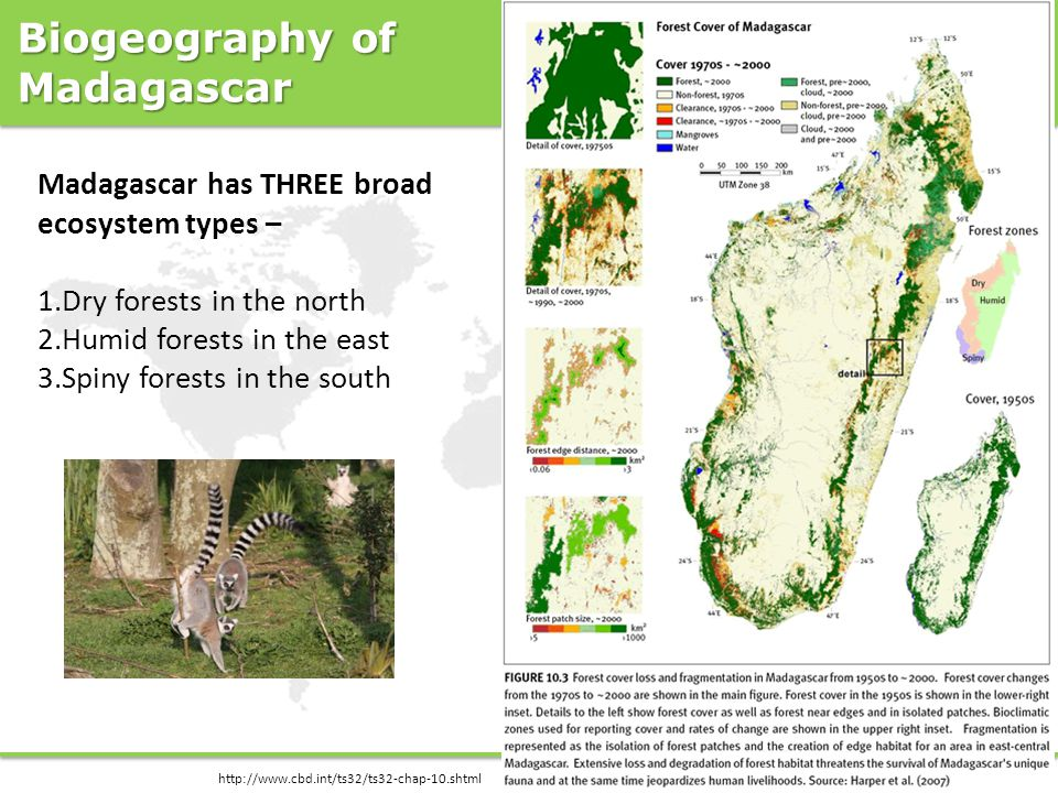 Biogeography of Madagascar