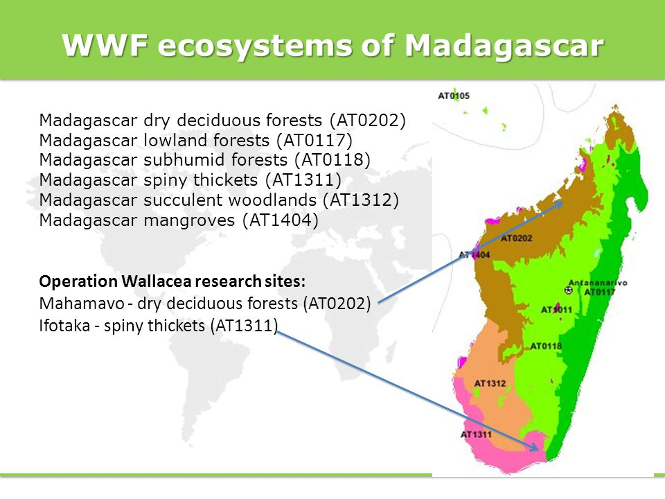 WWF ecosystems of Madagascar