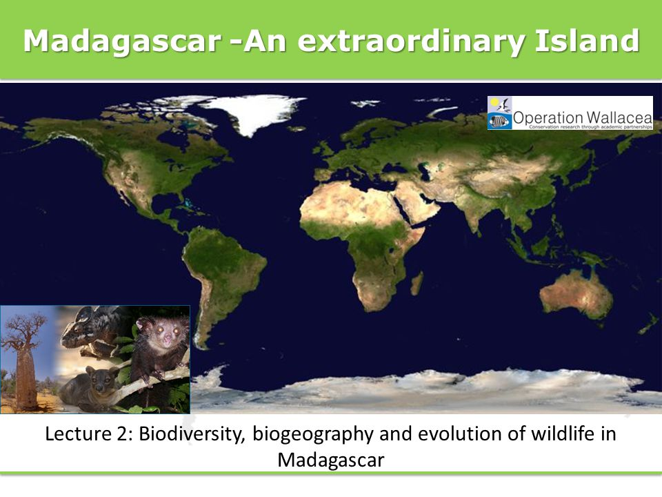 Madagascar -An extraordinary Island