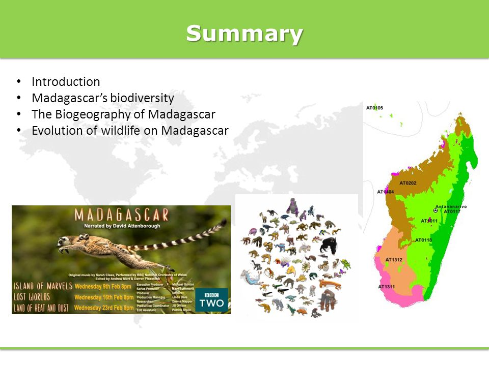 Summary Introduction Madagascar's biodiversity