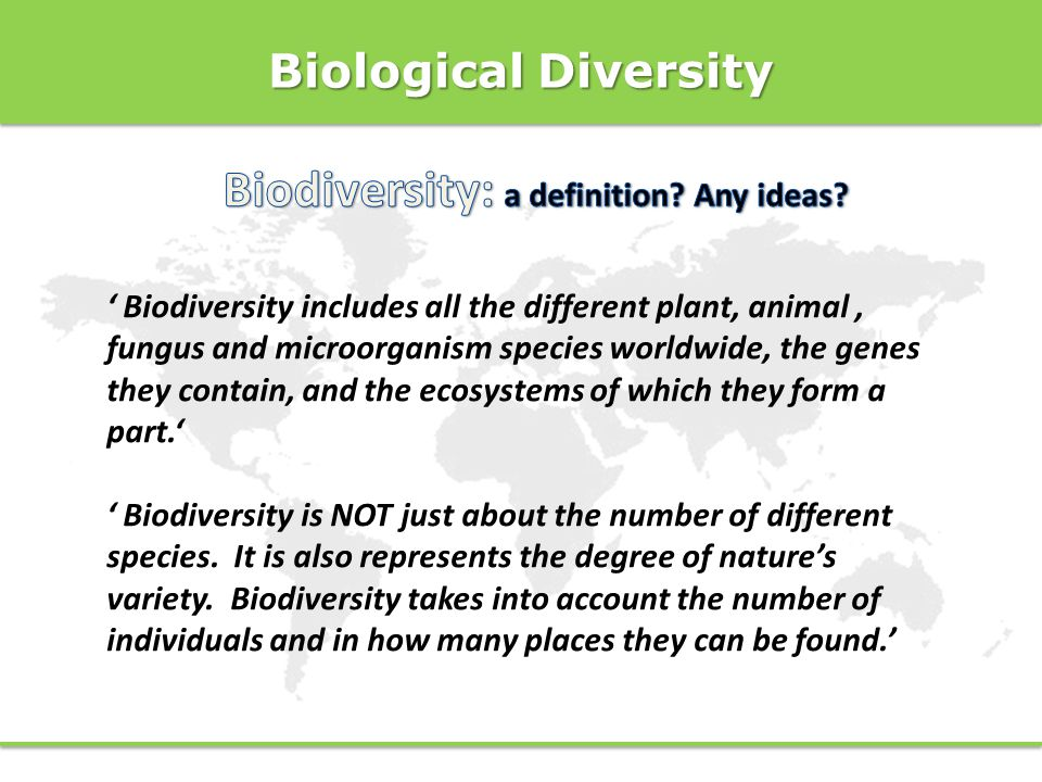 Biodiversity: a definition Any ideas