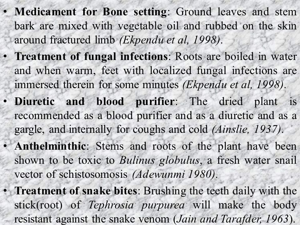 Medicament for Bone setting: Ground leaves and stem bark are mixed with vegetable oil and rubbed on the skin around fractured limb (Ekpendu et al, 1998).