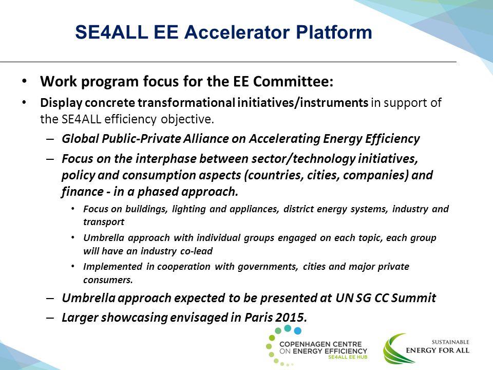 SE4ALL EE Accelerator Platform