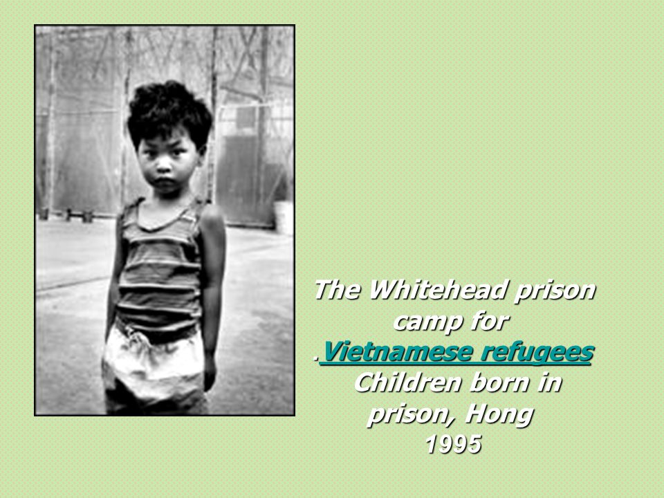 The Whitehead prison camp for Children born in prison, Hong