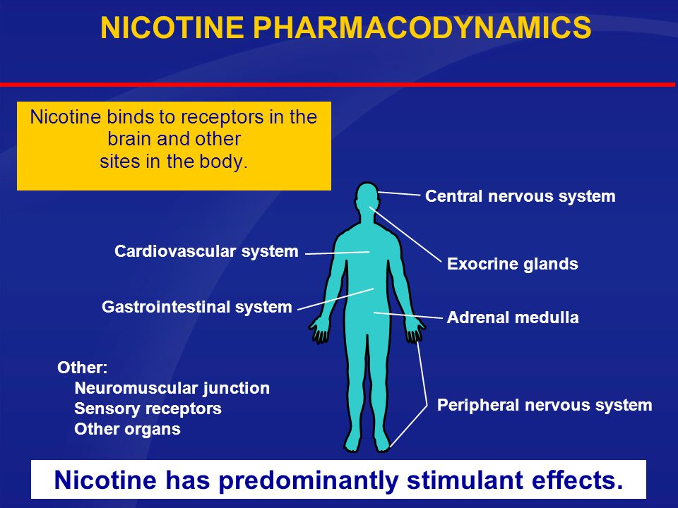NICOTINE PHARMACODYNAMICS