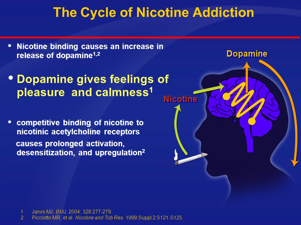 The Cycle of Nicotine Addiction