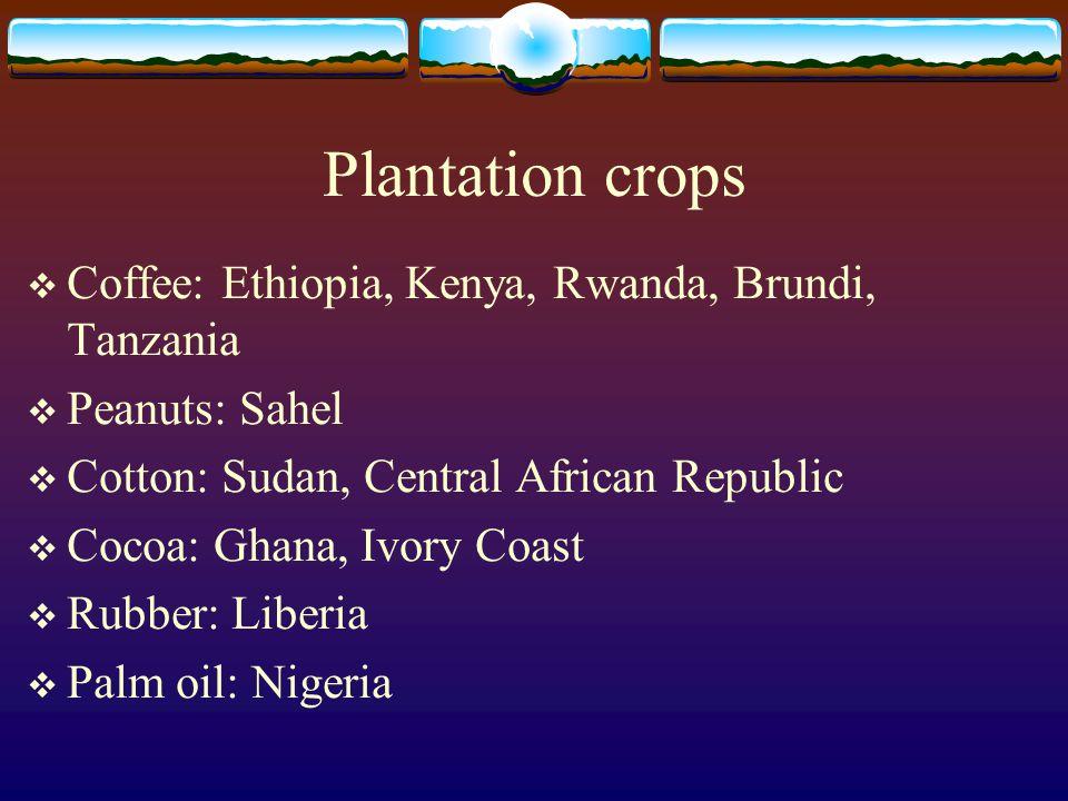 Plantation crops Coffee: Ethiopia, Kenya, Rwanda, Brundi, Tanzania